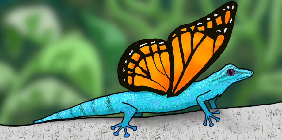 gecko butterfly finished1