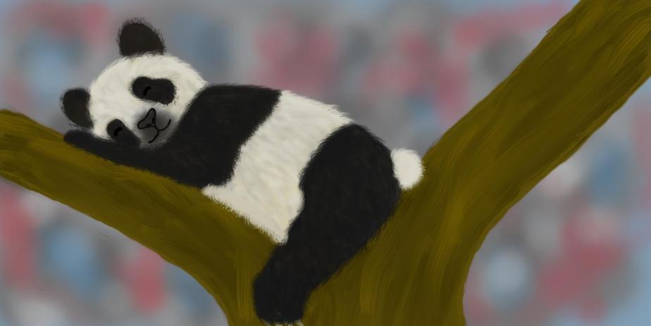 Pat the panda3